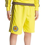adidas Scotland 2016 Home GK Shorts Junior PRE ORDER