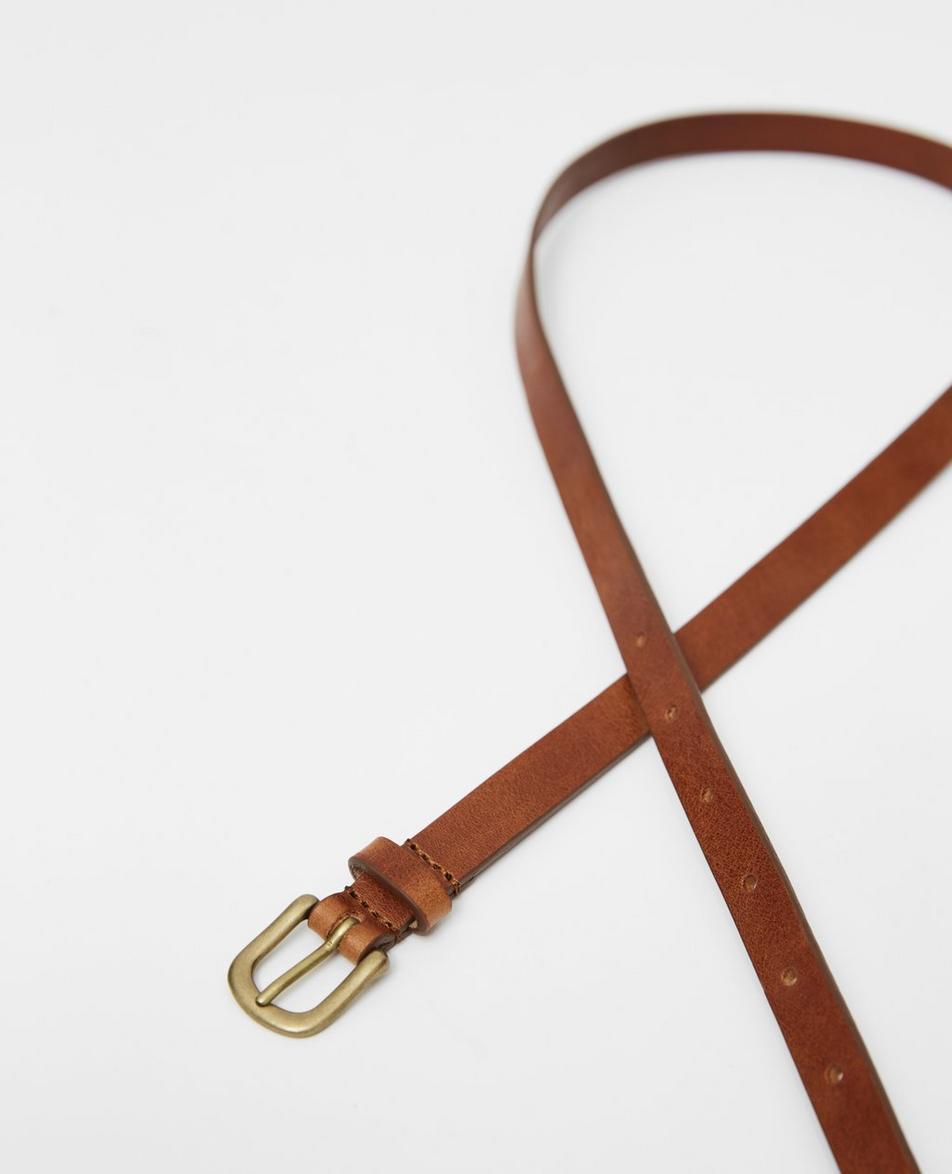 The Vinny Belt