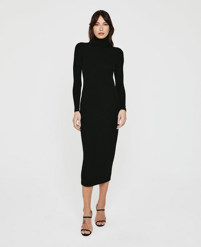 Jenny L/S Turtleneck Dress