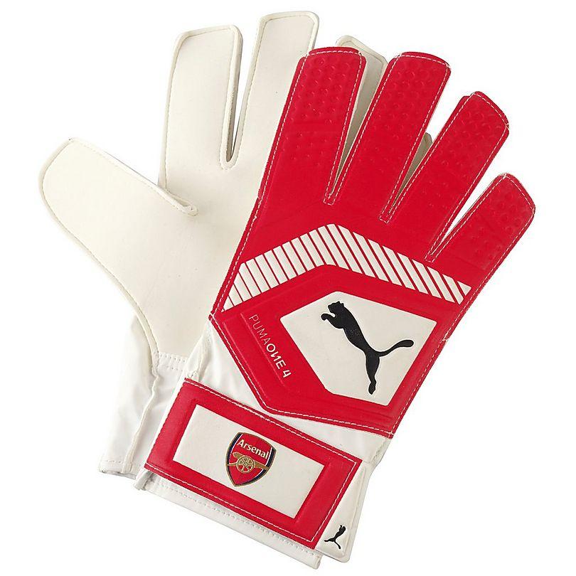 18/19 Puma GK Gloves Grip 18.4