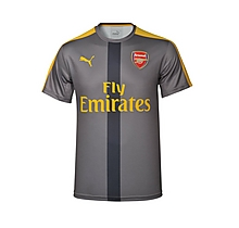 Arsenal Junior 2016/17 Grey Stadium Shirt
