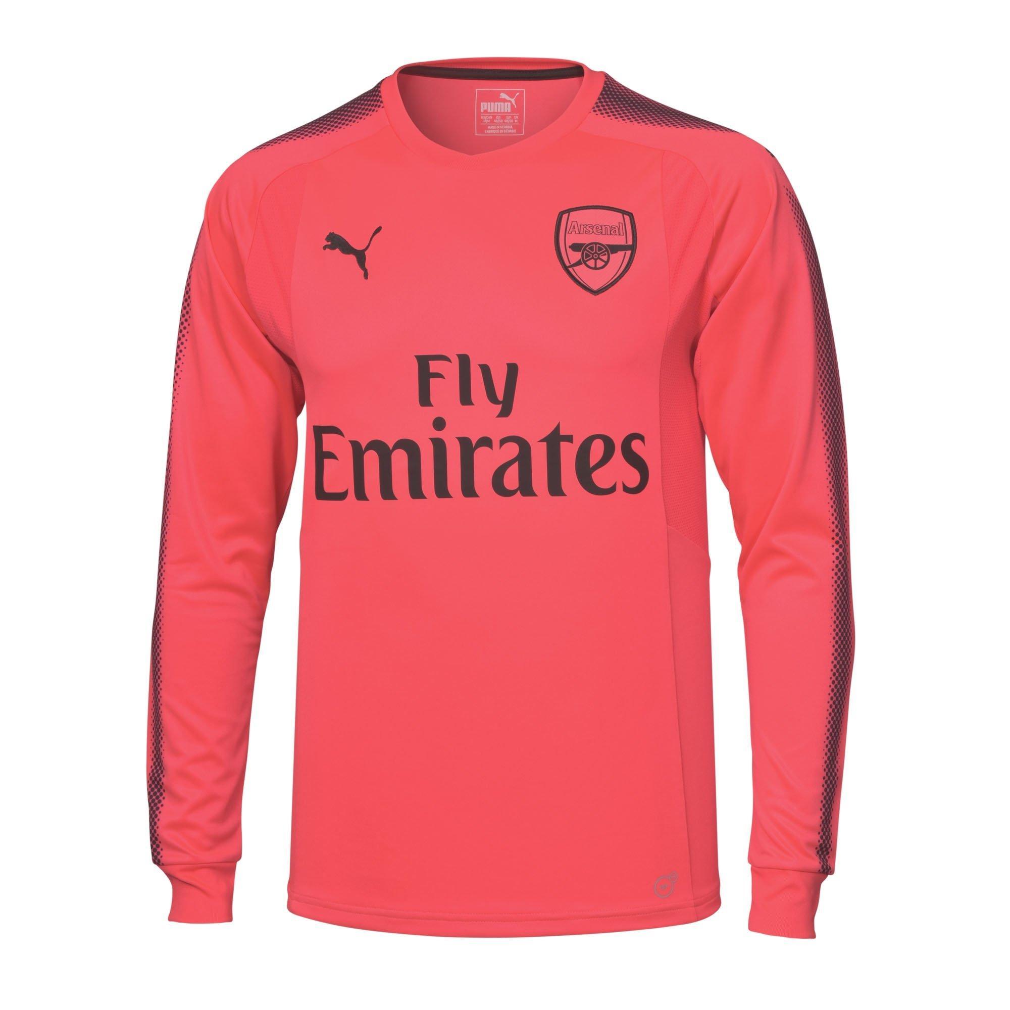 quality design b4bd8 dd219 arsenal away goalkeeper kit