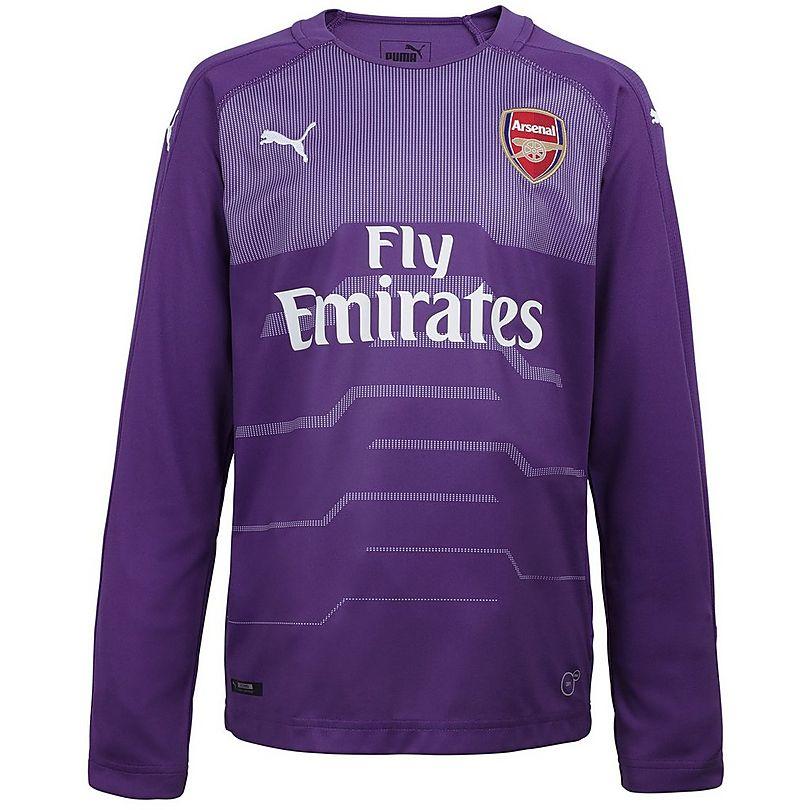 Arsenal Junior 18 19 Purple Goalkeeper Shirt  283fd3014