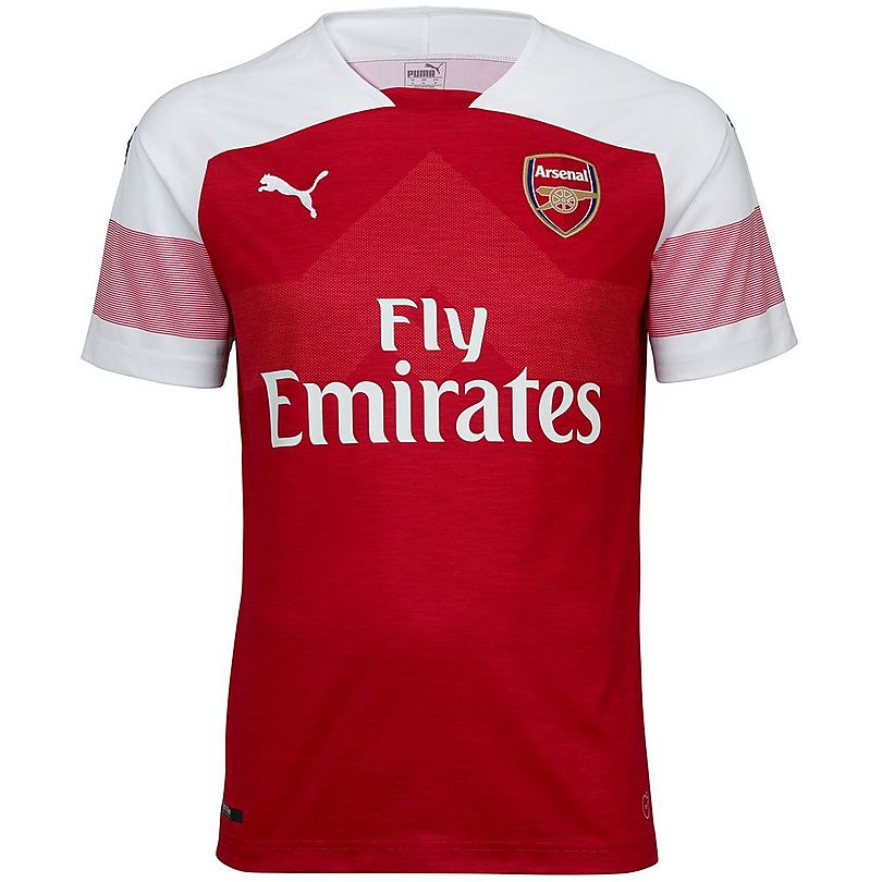83ca761d32a Arsenal Adult 18 19 Home Shirt