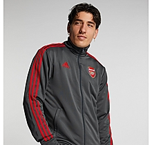 Arsenal Adult 20/21 ID 3 Stripe Track Top