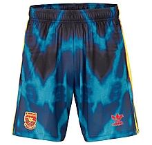 Arsenal Adult 20/21 Humanrace Shorts