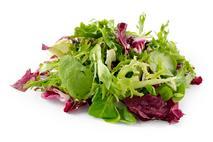 Gourmet Salad Mix