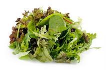 Herb Salad Mix
