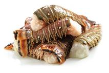 Rock Lobster Tails