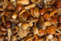 Marinated & Seasoned Exotic Mushroom Mix (800g drained weight)