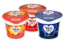 Yeo Valley Fruity Favourites Mixed Case Yogurt
