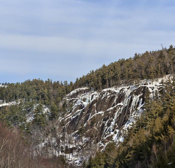 The side of a rocky cliff with a sprinkling of snow, with tall pine trees surrounding it.