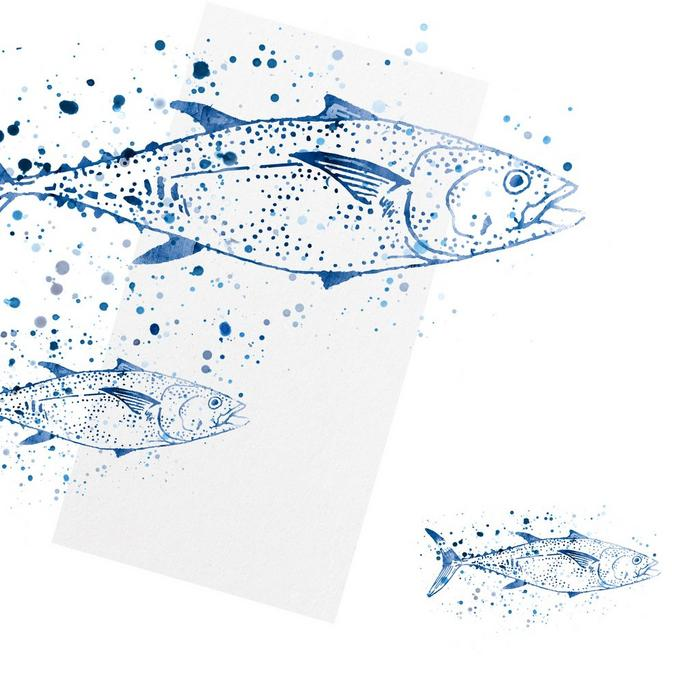 A watercolour illustration of three fish.