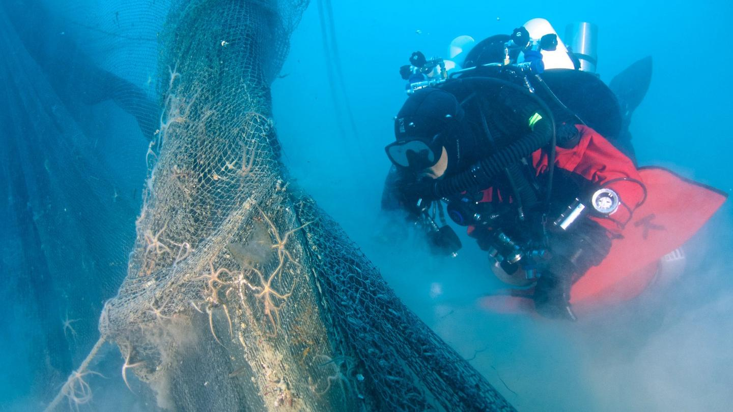 The divers removing ghost fishing nets from the ocean