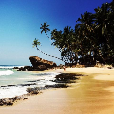 The beautiful beaches of Sri Lanka, with blue skies, sandy beaches and palm trees