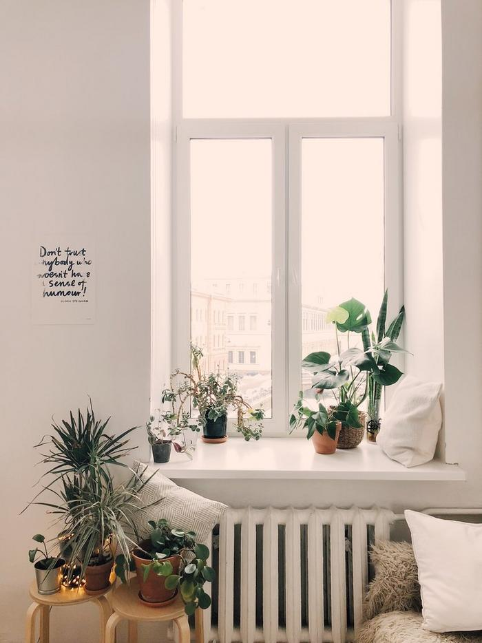 A large window letting bright light into a room, with lots of potted plants on and around the sill.