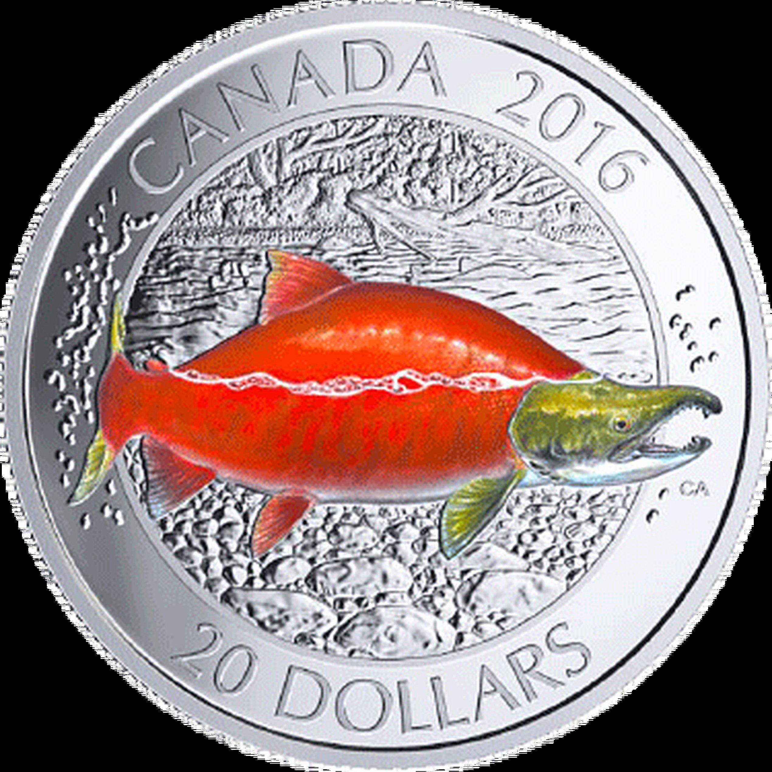 20 Cad Silber Kanada Kanadische Lachse Der Rotlachs Münzen