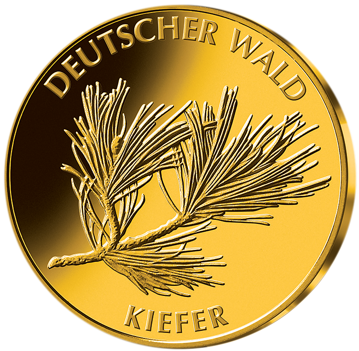 20 Euro Gold Münze BRD 2013 Kiefer, st