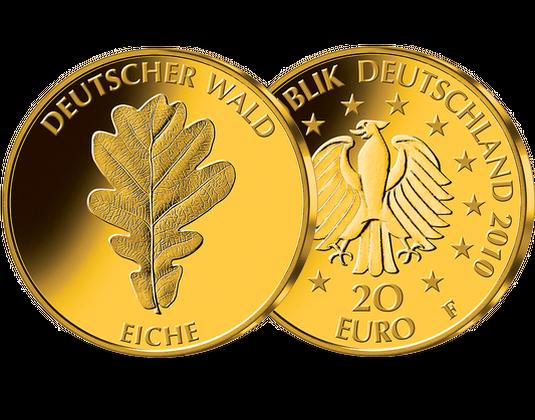 20 Euro Goldmünze 2010 Eiche Mdm Deutsche Münze