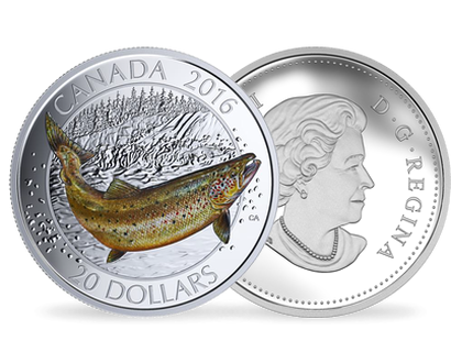 Canadian Salmonids - Atlantic Salmon $20 Fine Silver Coin