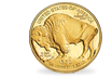 "USA 2017 50 Dollar Gold-Gedenkmünze ""American Buffalo"""