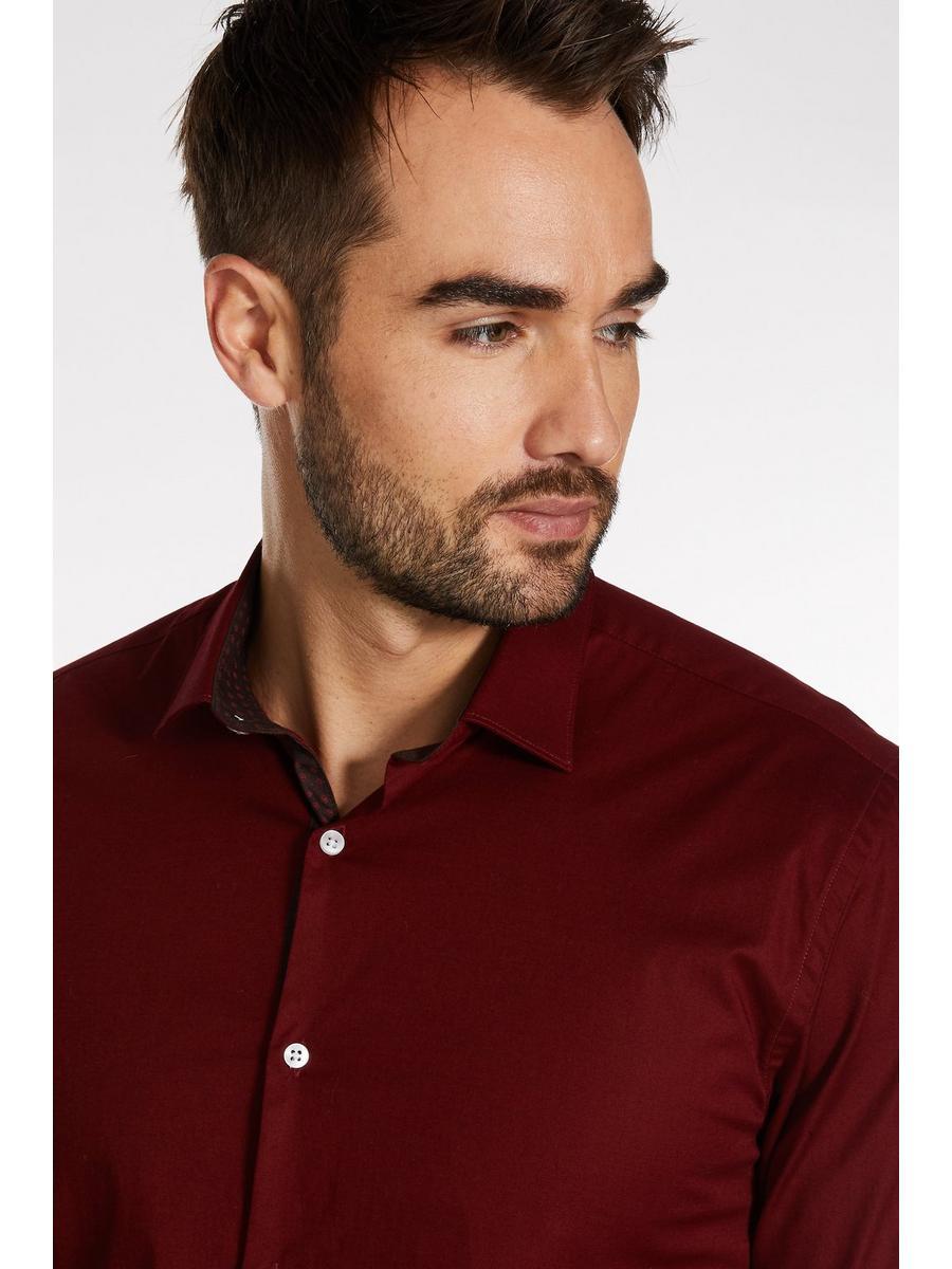 Long Sleeve Plain Shirt in Bordeaux