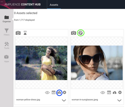 Images need to be published so you can preview your content in SFCC Storefront