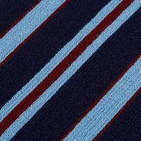Navy School Scarf