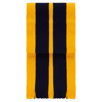 Navy/Gold striped School Scarf
