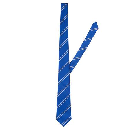 St Mary's Striped School Tie Blue