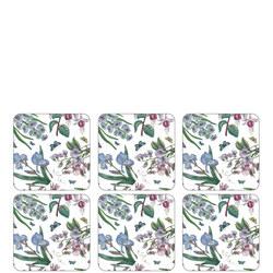 Coasters Botanic Garden Set of 6