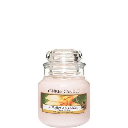 Classic Jar Champaca Blossom Small