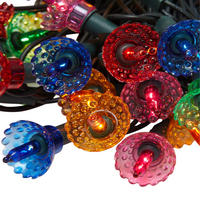 40 Pickwick Multicolour Lights