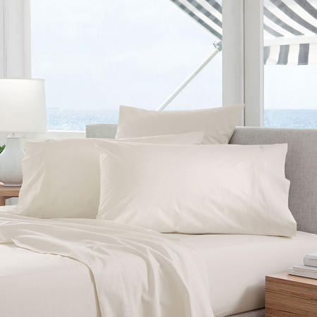 Classic Percale - 300tc Oxford Pillowcase Chalk