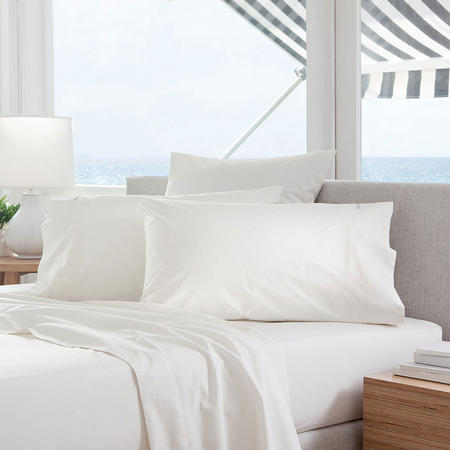 Classic Percale - 300tc Square Pillowcase Snow
