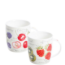 Fruit Market Assorted Fine China Mugs