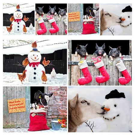 8 Piece Christmas Placemat & Coaster Set