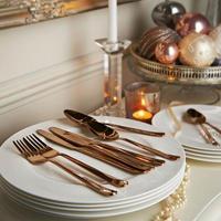 Titanium 16 Piece Cutlery Set Rose Gold