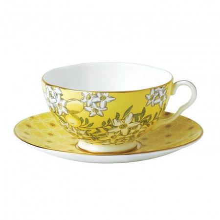 Tea Garden 2 Piece Set Teacup & Saucer Lemon & Ginger Multicolour