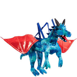 Dragon Ride On Blue