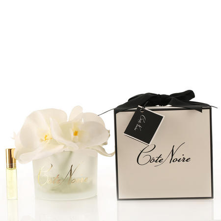 Perfumed Natural Touch Butterfly Orchids in Frost - White Blossom Diffuser