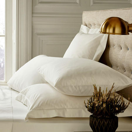 250 Thread Count Standard Pillowcase Pearl