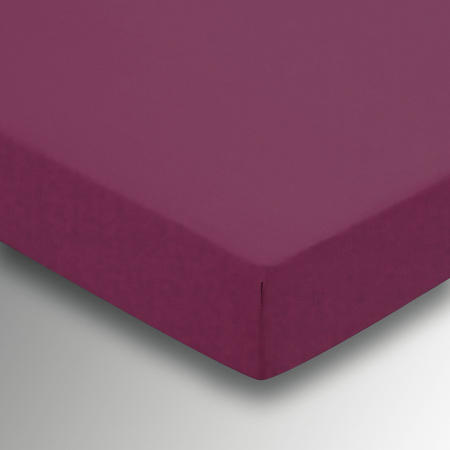 Percale Fitted Sheet Purple