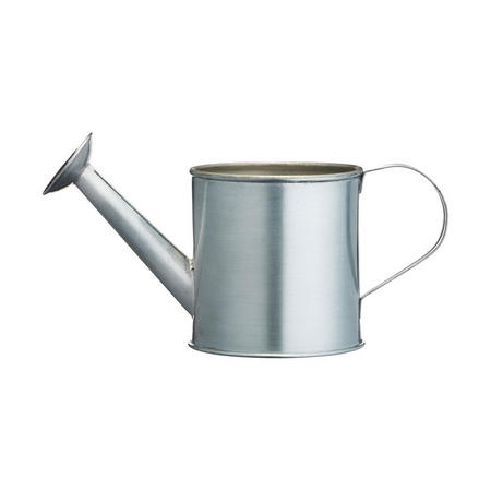 Artesa Mini Serving Watering Can 10cm  Stainless Steel