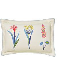 Floral Bazaar Oxford Pillowcase Cream