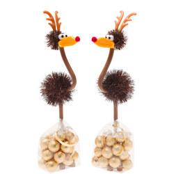 Red Nose Reindeer Bird Pen & Chocolates