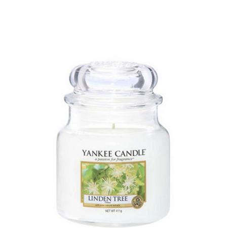 Linden Tree Medium Jar