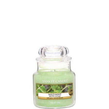 Wild Mint Jar Small