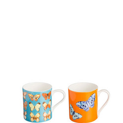 Butterfly Brights Bone China Mugs