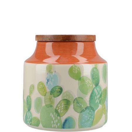 Drift Storage Jar Cactus